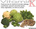 Vitamin K source