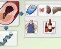 Types of hyperlipidemia